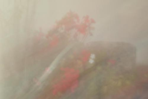 Wi_Nebel